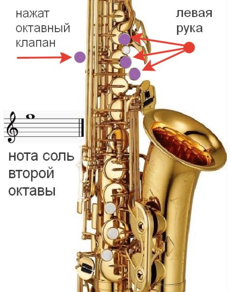 саксофон научиться соль
